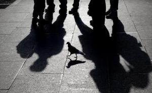 湖北鶴峰一受撤職處分干部年度考核仍合格:相關6人被問責
