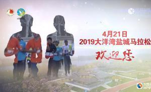 樱花配搭丹顶鹤!中国最美马拉松在盐城等你