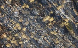 关于扑灭山火的管理思考