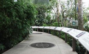 """""""姥爷温室""""重开了,这里曾是新中国首个热带亚热带植物展室"""