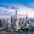 上海高质量发展调研行 世界银行向全球推荐上海这个单一窗口
