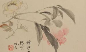 腊尽春回、草长莺飞,赴苏州博物馆品明清花鸟主题精品展