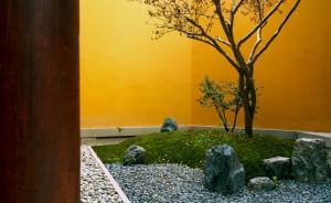 """""""85后""""造园人:给玉佛禅寺造园是我的善缘"""