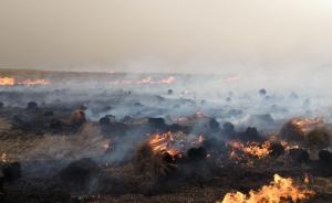 呼伦贝尔地区俄罗斯草原火灾再次入境,千余人扑救阻截