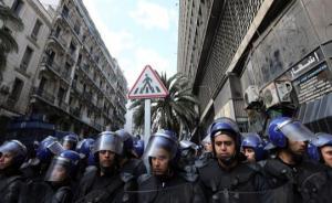 """""""灰犀牛""""搅动中东北非政治变局,中外专家激辩真正转型之路"""