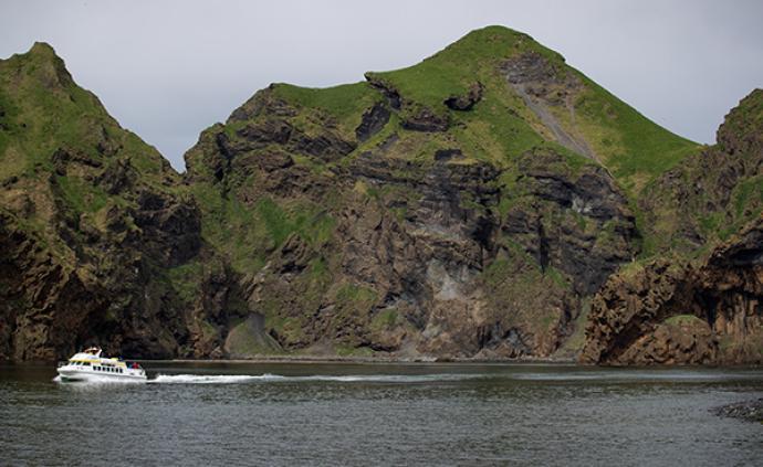 上海白鲸姐妹花安全抵达冰岛,它们的新家是一片开放水域