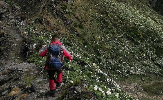 自然散步 | 穿越蒼山山脊線