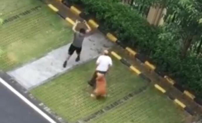 檢察日報刊文:養犬糾紛應得到法治回應