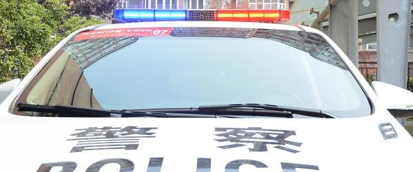 涉嫌猥亵儿童罪,犯罪嫌疑人王某某、周某某被上海检方批捕