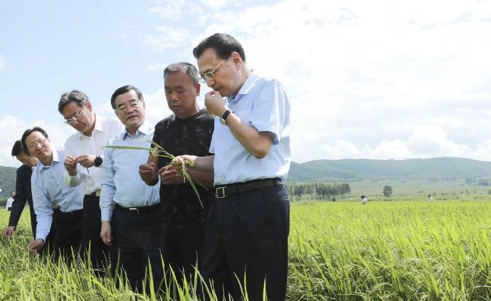 """李克强对农民说:大米里有大学问,种大米也能种出""""高大上"""""""