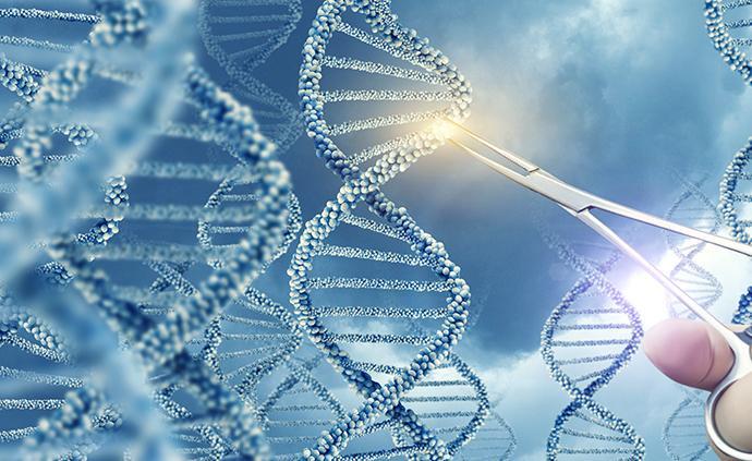 """講座丨從""""阿爾法狗""""到基因編輯:我們如何面對新興技術?"""