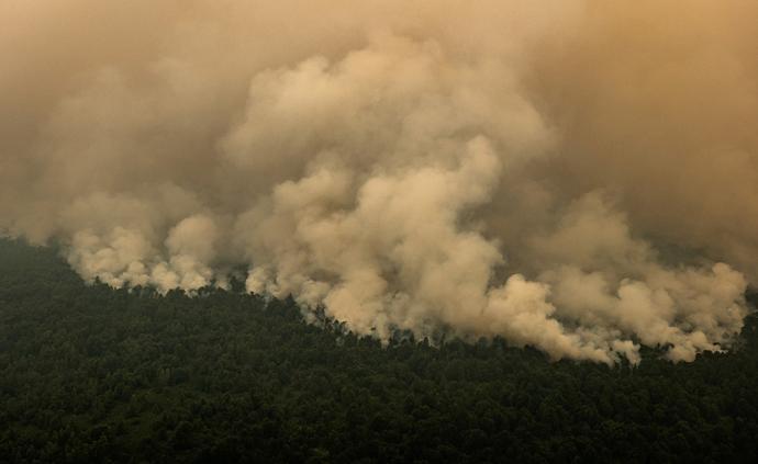 当地时间2019年9月14日,印尼加里曼丹,印尼林火继续肆虐,空气质量不佳。印度尼西亚林火近几个月持续肆虐,连累马来西亚、新加坡等邻国遭受烟霾污染。