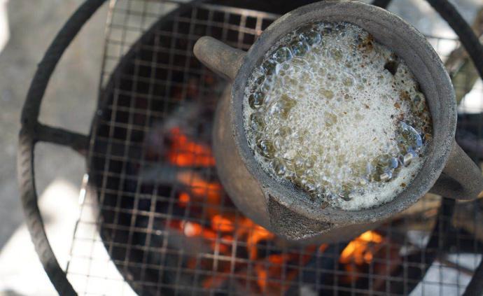 海拔2000米乌蒙腹地,寻找原生野茶的人文投影