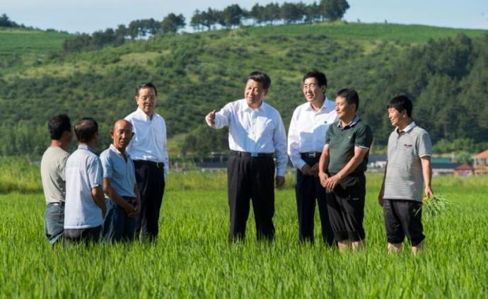 """习近平向全国广大农民和工作在""""三农""""一线同志表示诚挚问候"""
