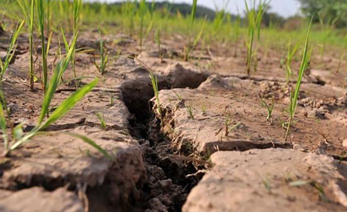 湖南96縣市出現氣象干旱,已開展今年首次飛機人工增雨作業