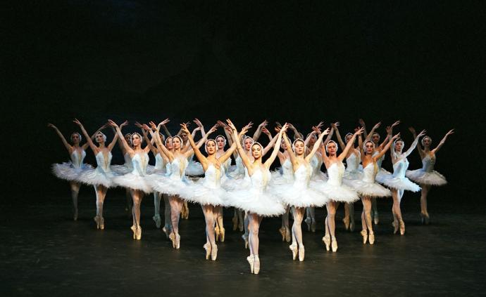 20年后,格鲁吉?#21069;?#34174;舞演员尼娜带着《天鹅湖》回到上海