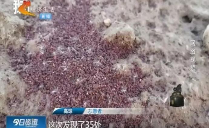 河北石家莊滹沱河濕地野鴨遭投毒后被出售,當地警方啟動調查