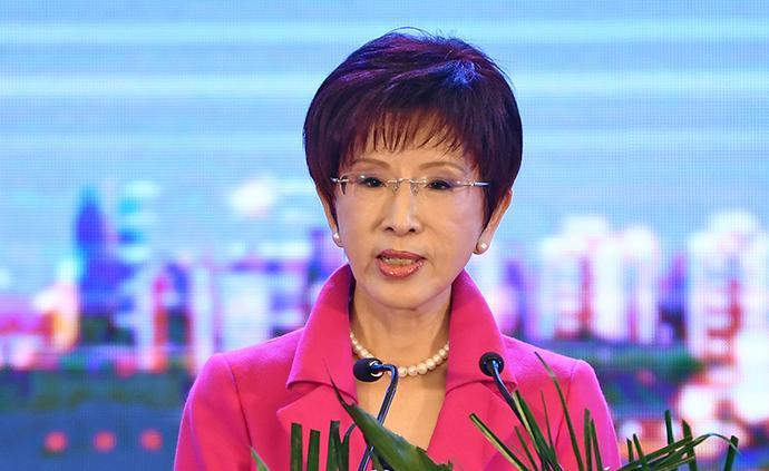 洪秀柱走訪基層:民進黨需為臺南施政成績墊底負責