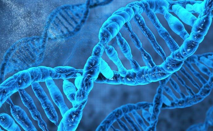 印度科學家發現DNA某些區域可免受輻射傷害