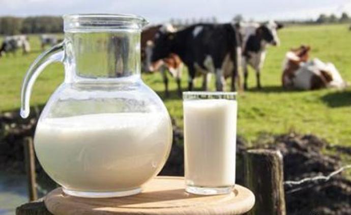 生鮮乳中國農墾乳業聯盟團體標準發布:到廠溫度不超6攝氏度