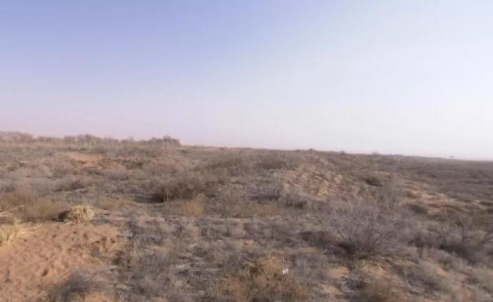 寧夏黨委書記到中衛美利林區沙漠污染整治現場,聽取進展報告