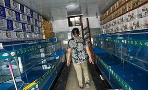 大闸蟹行业洗牌加速:网售蟹券低至1折,上海蟹店一年关三成