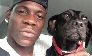 """巴神为狗狗救助站捐上万英镑?他的世界只愿与""""汪星人""""分享"""