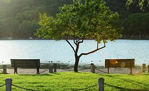 西湖减少长凳数量保持间距为恋人留私密空间,源于习近平建议