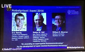 美、德3位科学家分享诺贝尔化学奖