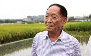 """袁隆平领衔攻关""""超级稻""""亩产过千公斤,创新纪录"""