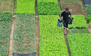 中国农业部部长:村级组织只能以农户书面委托为前提组织流转