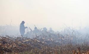 吉林农民烧秸秆被行政拘留,专家称应识别主要污染源应对雾霾