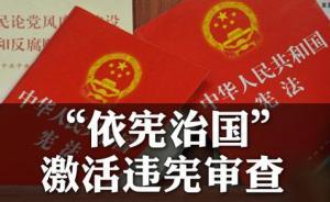 专家建议设立直属国家主席的宪法审查机构