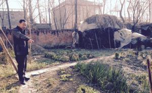 安徽一家六口铊中毒事件警方尚未立案,村民不敢吃菜园里的菜