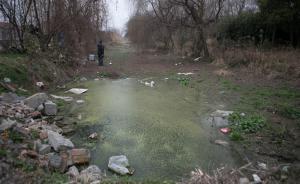 沪环保局长回应合庆污染之痛:第一时间调研,治理向郊区倾斜