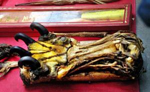 外交部:中国全面禁猎并禁止虎骨贸易和虎骨入药