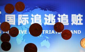 """中国启动国际追逃追赃""""天网""""行动:抓捕一批,劝返一批"""