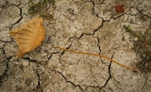 中国气象局长警告:气候变化影响中国重大工程的安全性稳定性