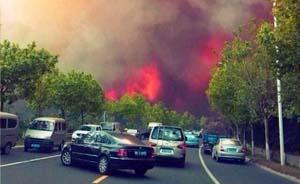 厄尔尼诺曾致全球多国发生严重森林大火