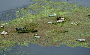 环保部:全国74城仅3个空气达标,长江口水质极差