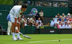 2015年6月29日,伦敦温布尔登,在温布尔登网球锦标赛上,塞尔维亚网球名将德约科维奇试着赶走一只突然闯入比赛的小鸟。