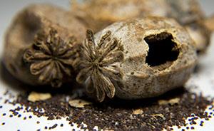 三款进口食品含罂粟籽被禁,国内外标准不同引冲突