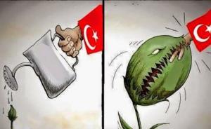 土耳其为什么要养虎为患?