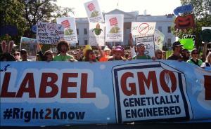 美国拟立法禁止强制标识转基因引争议,近500机构请愿支持