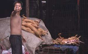 """凌晨探访玉林狗集:""""不让卖狗,他们会和你拼命的"""""""