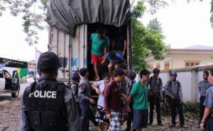 外交部:高度关切缅方对中国伐木工人的判刑