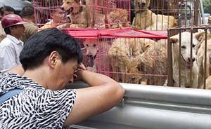 穷困潦倒的救狗人:揣着6000元到玉林买狗