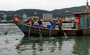 """联合国首开环境大会:海洋塑料垃圾每年""""吞""""130亿美元"""