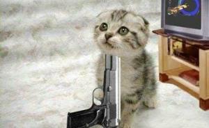 动物真的会自杀吗?