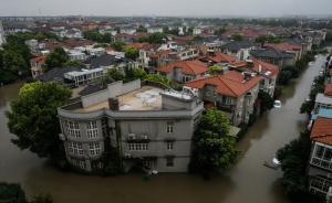 """下暴雨不用再""""看海"""",上海选定三个区域试点建""""海绵城市"""""""